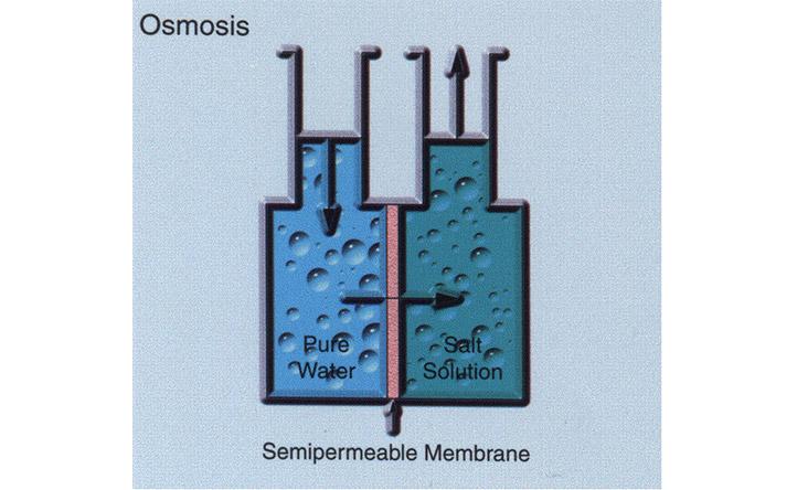 osmoticpower3