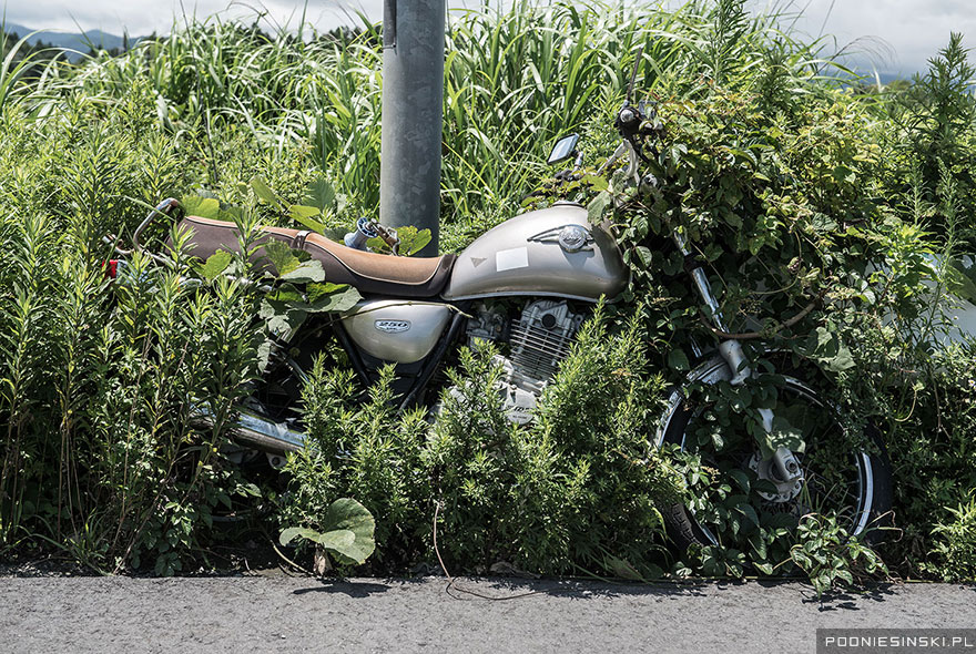 4-A chained-up motorcycle is slowly absorbed into the field