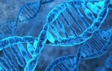DNA کشف شده از یک آفریقایی باستانی، پیچیدگی کوچ انسانها بین قارهها را نشان میدهد