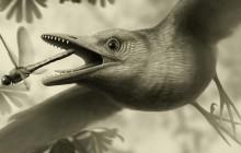 پرندگان باستانی هم قابلیت پرواز داشتند