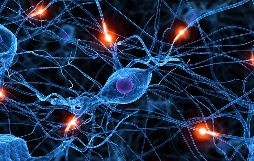 نقشهی فعالیت مغزی مثل اثرانگشت، ثابت است