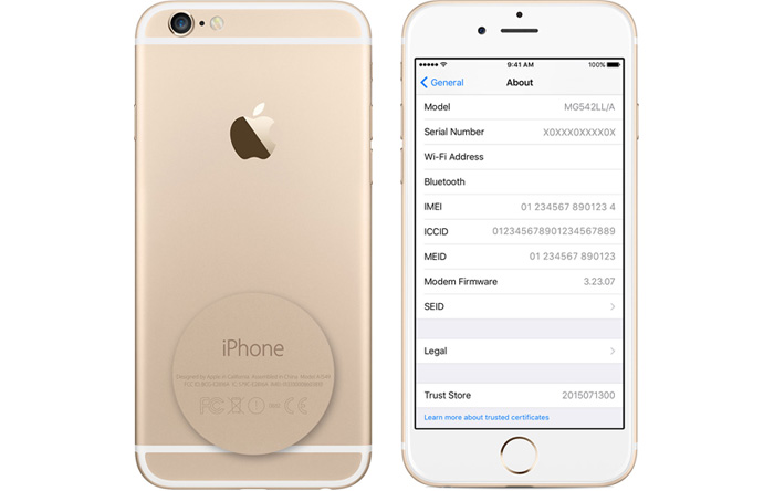 iPhone 6 Gold - ICCID