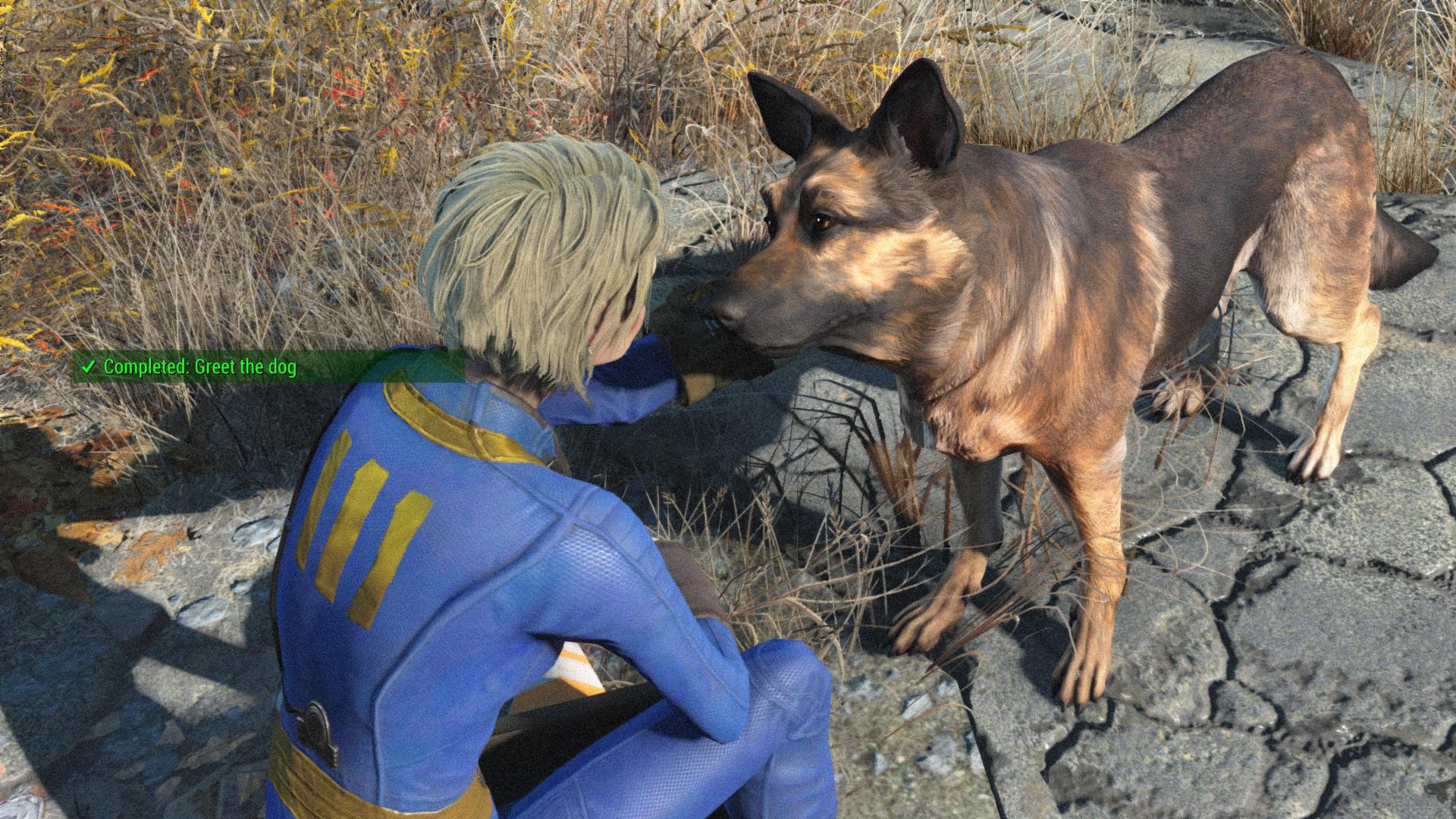 1-Fallout-4_20151113131832