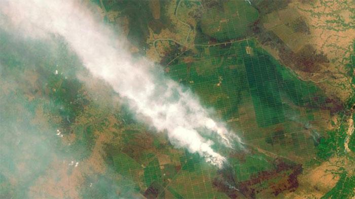 آتشسوزی جنگلهای «کالیمانتان»-Kalimantan- در کشور اندونزی