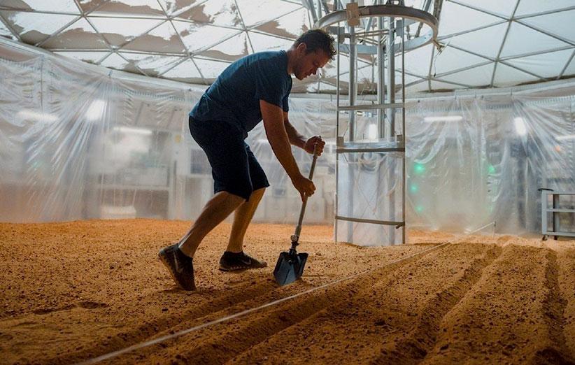 دانشمندان میخواهند در مریخ سیبزمینی پرورش دهند