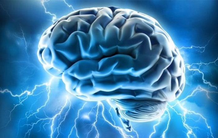 Brain Memory Capacity