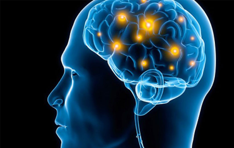 میزان ظرفیت حافظهی مغز انسان مشخص شد