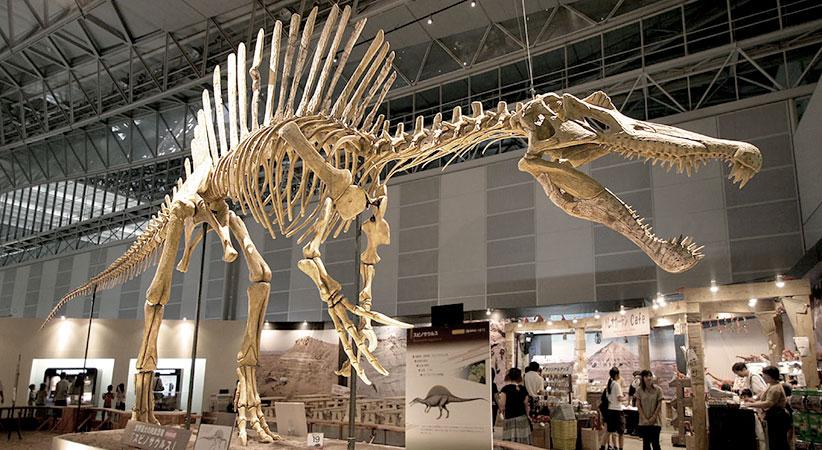 Spinosaurus_02