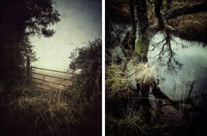 عکاسی موبایل - عکاسی حرفهای جولیان کالورلی ۰۳