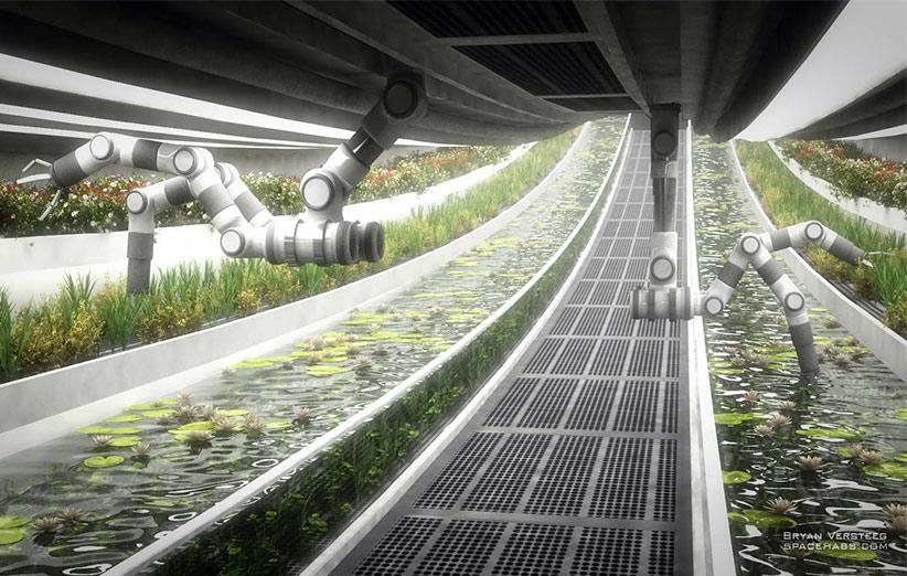 در سفرهای طولانی مدت فضایی حمل مواد غذایی از زمین تقریبا غیر ممکن است و باید در فضا کشاورزی کرد.