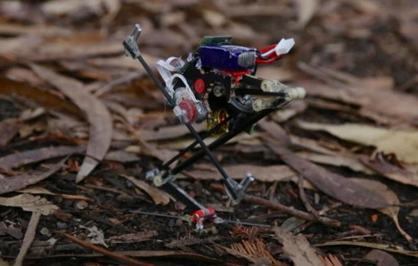 این ربات پارکور کار را ببینید