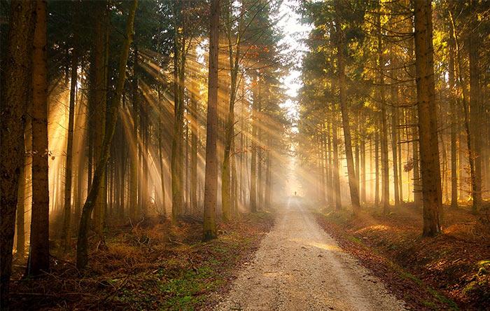 نور مرئی قسمتی از تابش الکترومغناطیس است