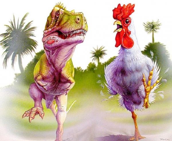 پرندهها یک شبه از تیرانوزاروسرکس بوجود نیامدند. در عوض، ویژگیهای کلاسیک پرندگان یکی یکی تکامل یافت.