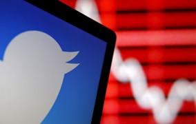 تنوع قومیتی در توییتر