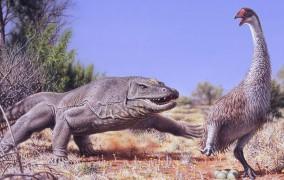 انقراض جنیورنیس