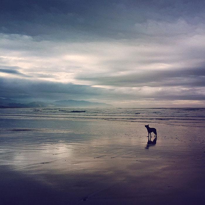 عکاسی موبایل - انعکاس ۰۴