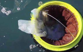 سطل زبالهی دریایی