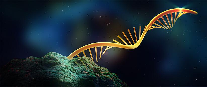 به نظر میرسد پیش از DNA، موجودات زنده فقط دارای RNA بودند. با این حال دقیقا مشخص نیست خود RNA چگونه بوجود آمد.