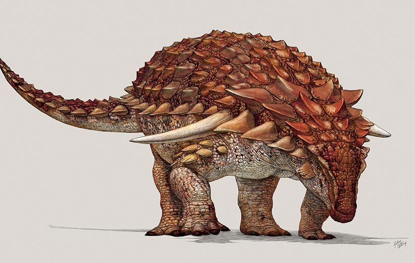 کشف گونهای جدید از دایناسور که ۵ متر طول دارد