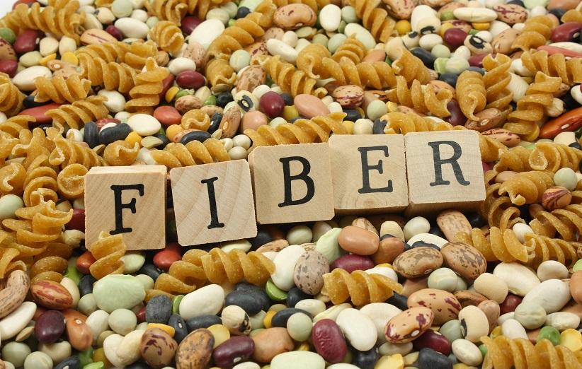 فیبر تغذیه