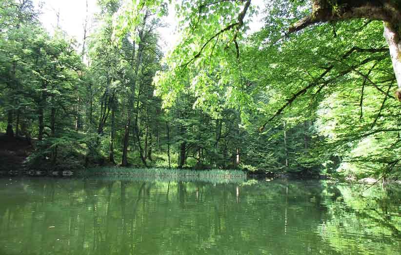 طبیعت دریاچه