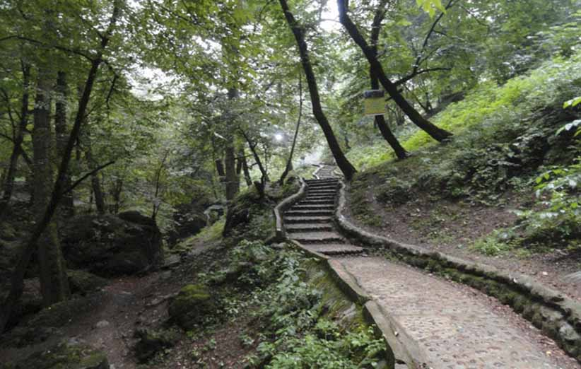 جنگل قلعه رودخان