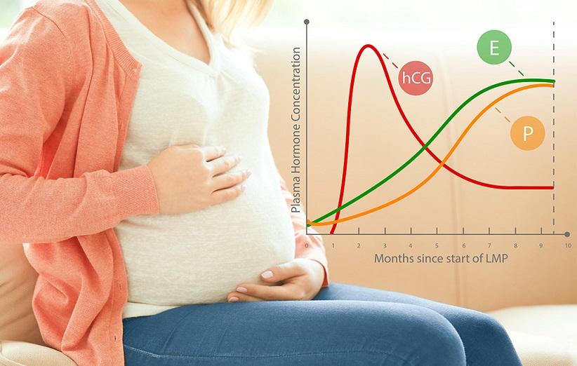 تغییرات فیزیکی زنان در بارداری