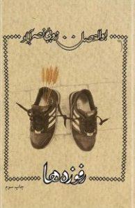 آثار ابوالفضل زرویی نصرآباد
