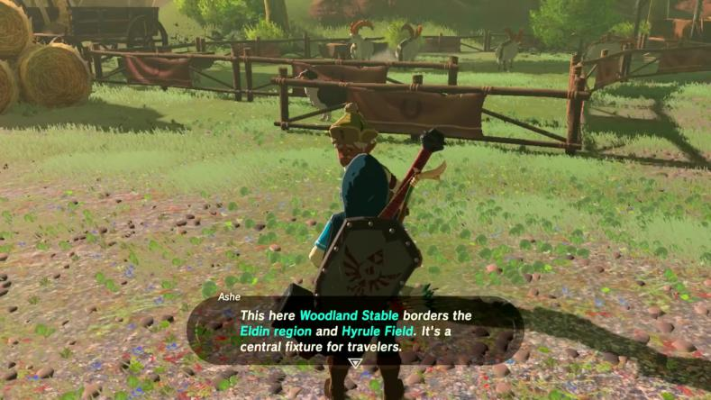 Mark Brown - Breath of the Wild_00032