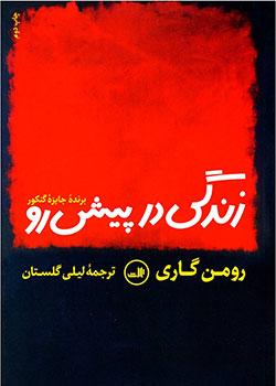 کتاب های رومن گاری
