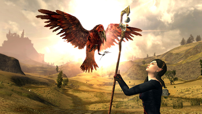 بازی Lord of the Rings Online 2007