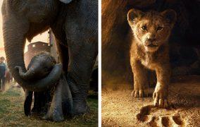 همه چیز دربارهی «دامبو» و «شیر شاه»؛ بازسازیهای امسال دیزنی و نوستالژی کودکیهایمان