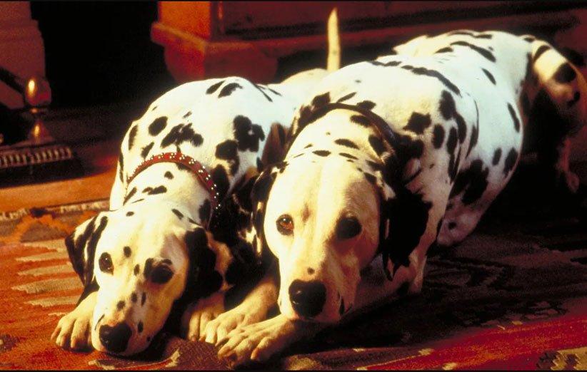 101 سگ خالدار بازسازی های دیزنی