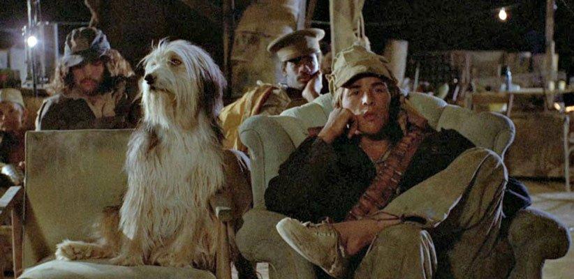 بهترین فیلم های هراس از تکنولوژی پسری با سگش