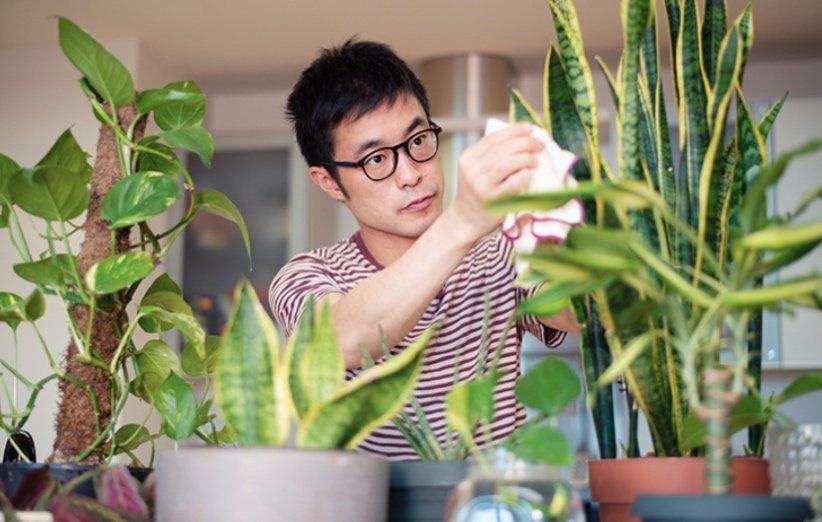 تمیز کردن گیاهان