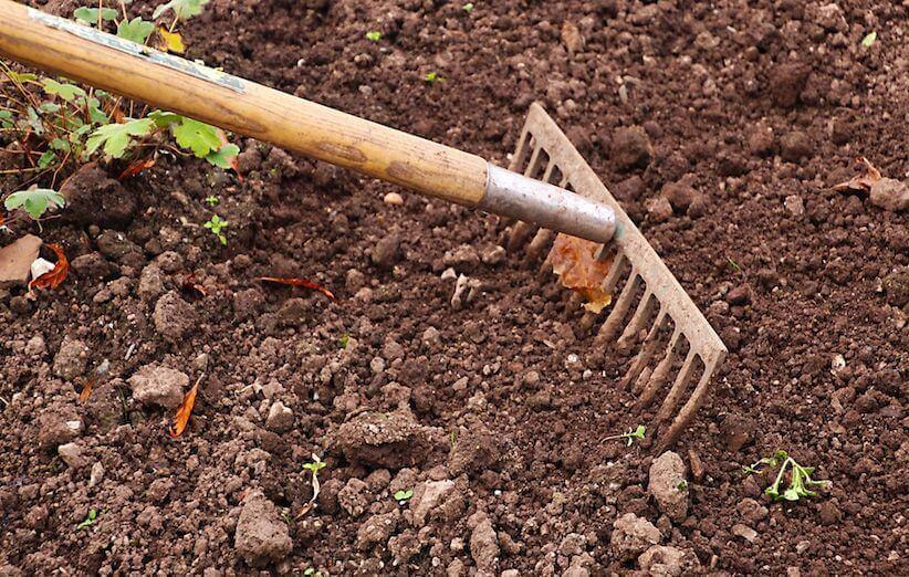 انتخاب محل مناسب کاشت سبزیجات در منزل