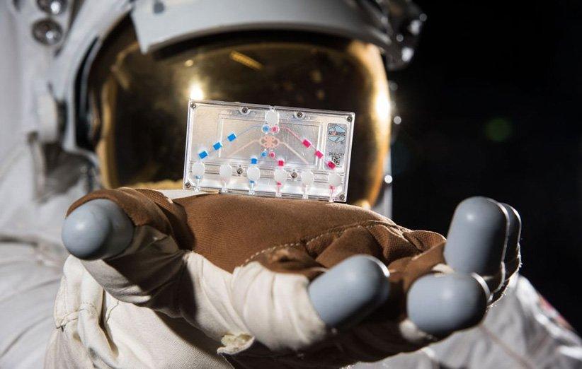 آزمایش علمی در ایستگاه فضایی بینالمللی