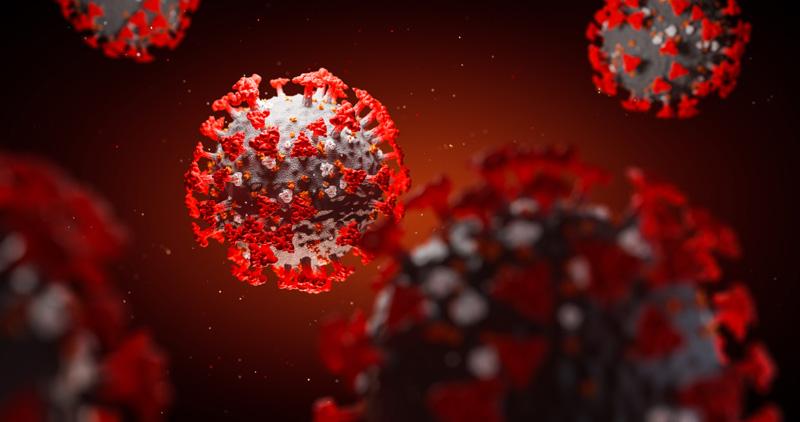 ویروس کووید 19