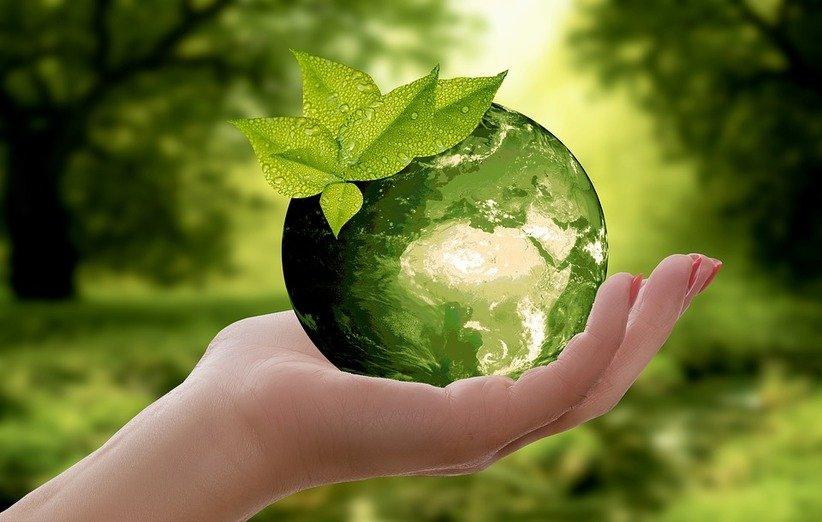 فواید بازیافت زباله برای محافظت از اکوسیستم و حیات وحش