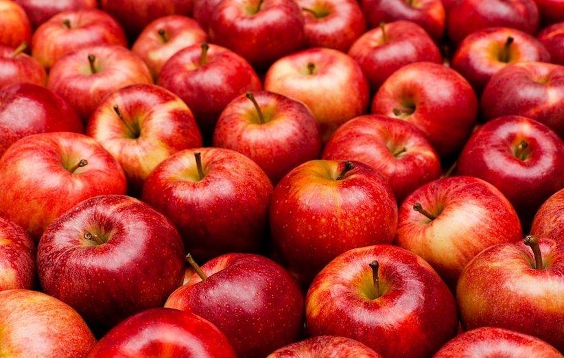 تغذیه مادر شیرده - سیب