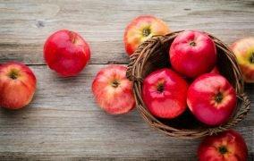 فواید و مضرات رژیم غذایی مونو