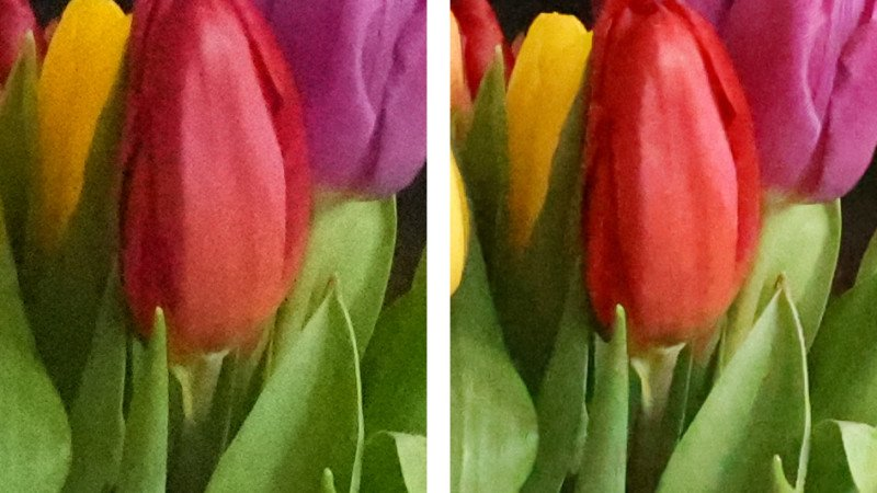 مقایسه دوربین سونی آلفا 1 با کانن EOS R5