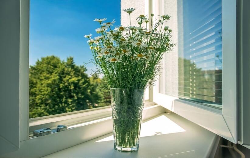 گلدان گل با گلهای سفید کوچک