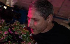 مایک هاپکینز گیاه پاک چوی را بو میکند.