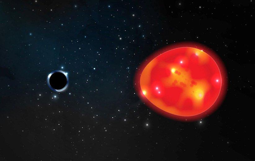 طرحی گرافیکی از سیاهچالهی تکشاخ و غول سرخ همدم آن
