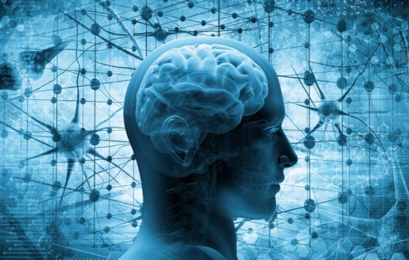 پتاسیم برای سیستم عصبی