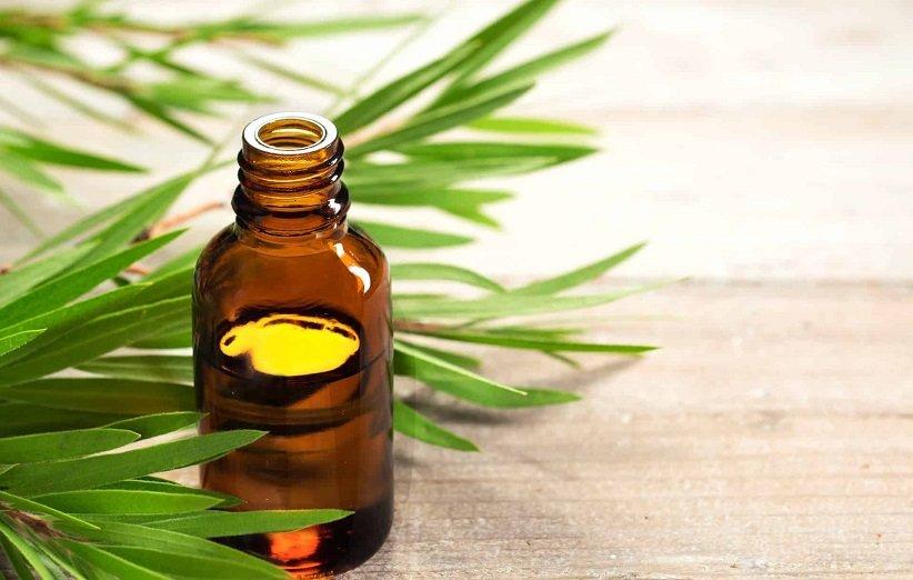 روغن درخت چای برای درمان اگزما
