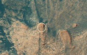 تصویر مدارگرد شناسایی مریخ از مریخنورد کنجکاوی ناسا