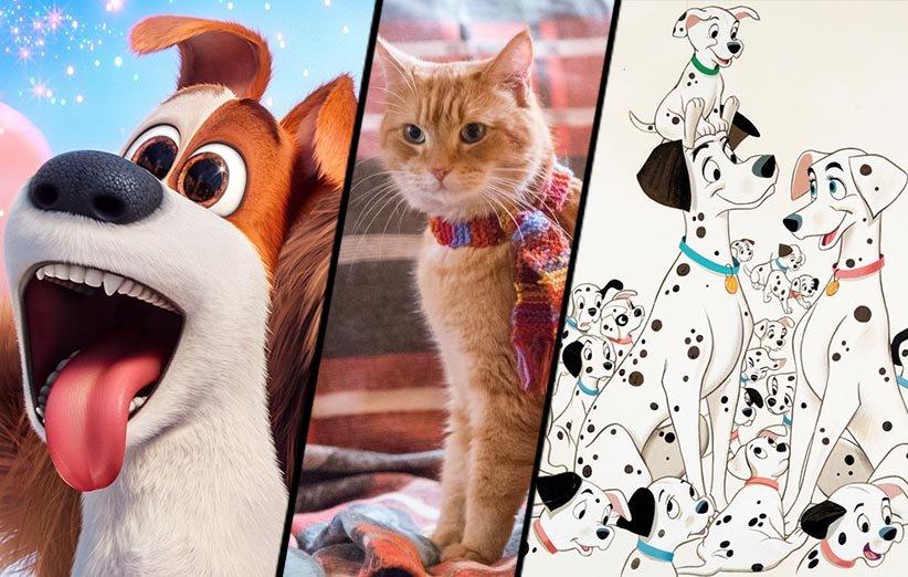 ۲۶ حیوان به یادماندنی فیلمهای سینمایی