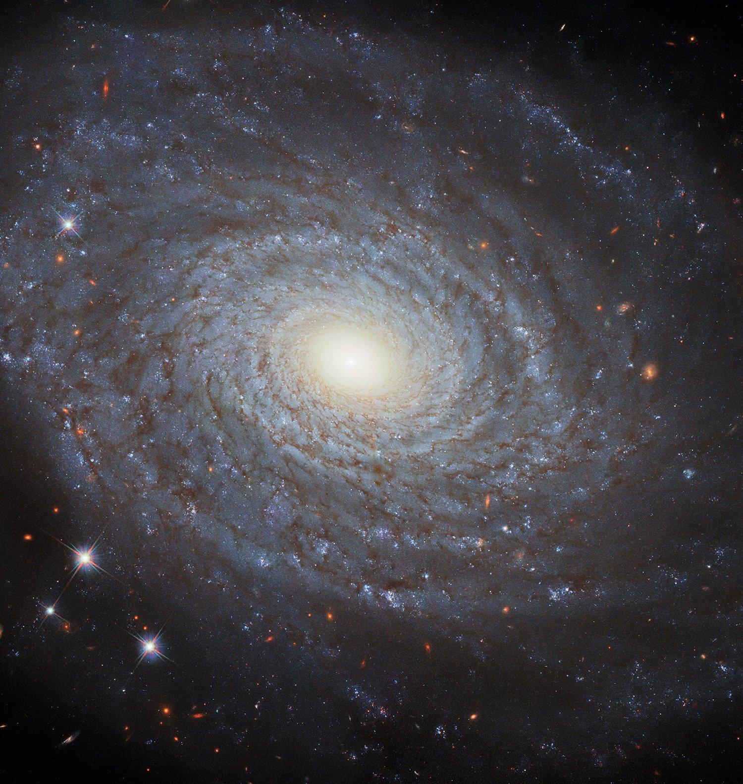 جزئیات کهکشان مارپیچی NGC 691 از نگاه هابل